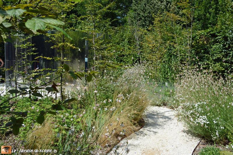 15-Jardin-camouflage-1