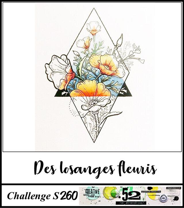 S260 - Losange fleuri