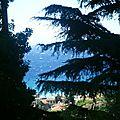 Panorama dal Cedro (13)