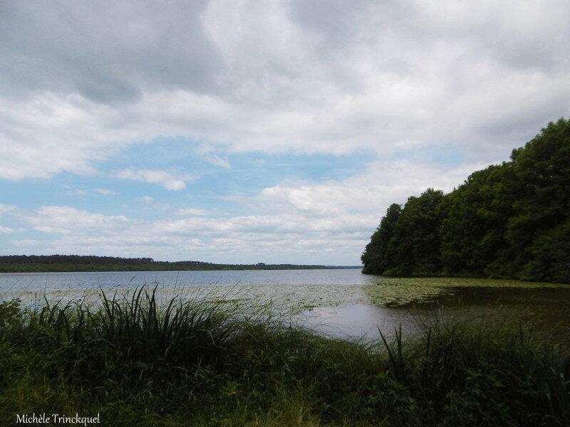 Lac de Soustons 190618