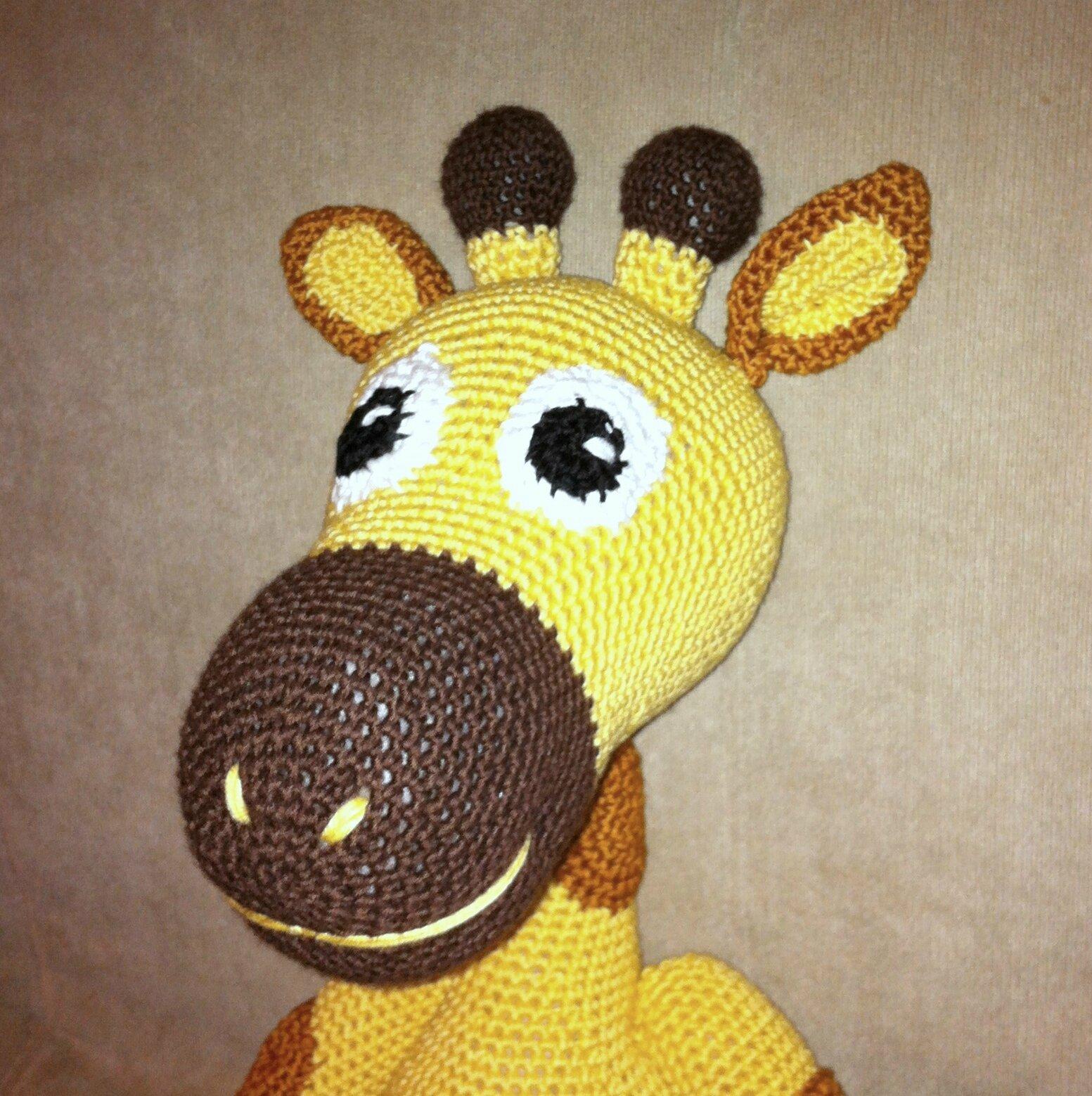 petite girafe détail de la tête