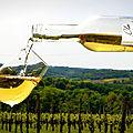 Sortie dégustation de vin de jurançon