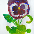Pansy on acrylic canvas
