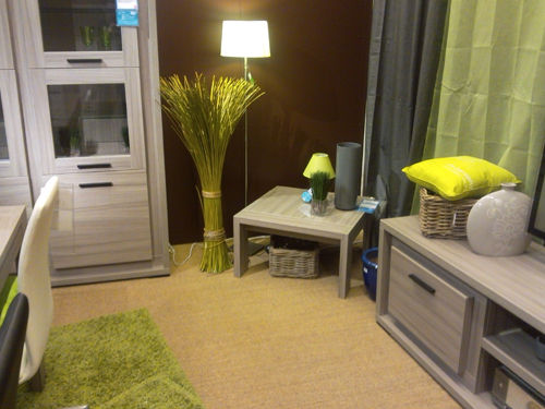 salon Vert et beige - Photo de MES REALISATIONS - Je change ...