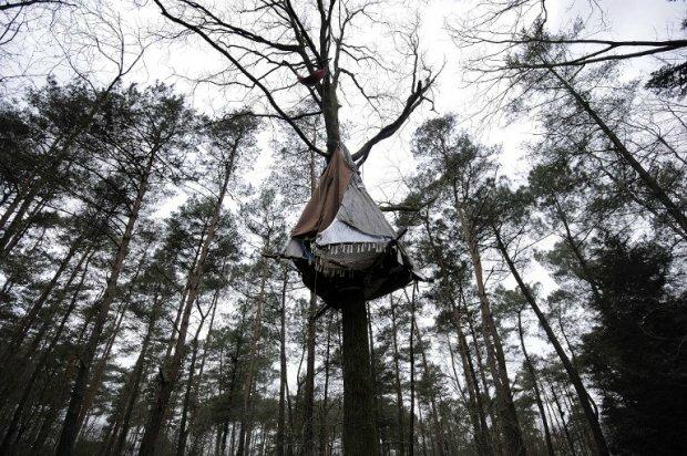 nddl-cabane en haut d'un arbre