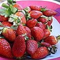 27 janvier - des fraises en janvier