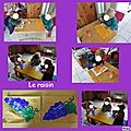 Le raisin en coloriage
