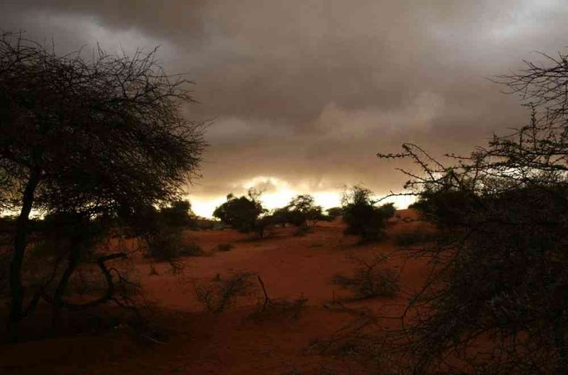 Seckasysteme-Mauritaniemauritania%202007%20006_jpg_rs