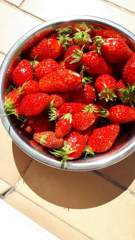 Brioches aux fraises fraîches, gaçage au citron 054