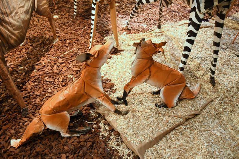 Zoo de papier_14