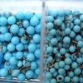 graines-perles14