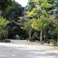 parc momijidami (7)
