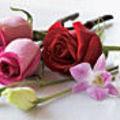 Les fragrances florales