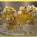 Vacherin express ananas coco passion