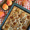 Gâteau clafoutis aux abricots