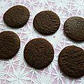 Cookies crus hyperprotéinés chanvre cacao chia baobab psyllium et yacon (diététiques, vegans, sans gluten et riches en fibres)