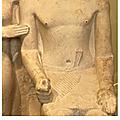 Anatomie humaine - le membre supérieur - iv - atlas (2)
