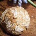 Petits pains briochés à la farine complète