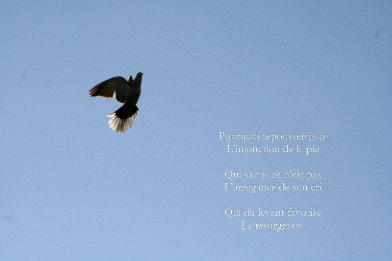 Image0065