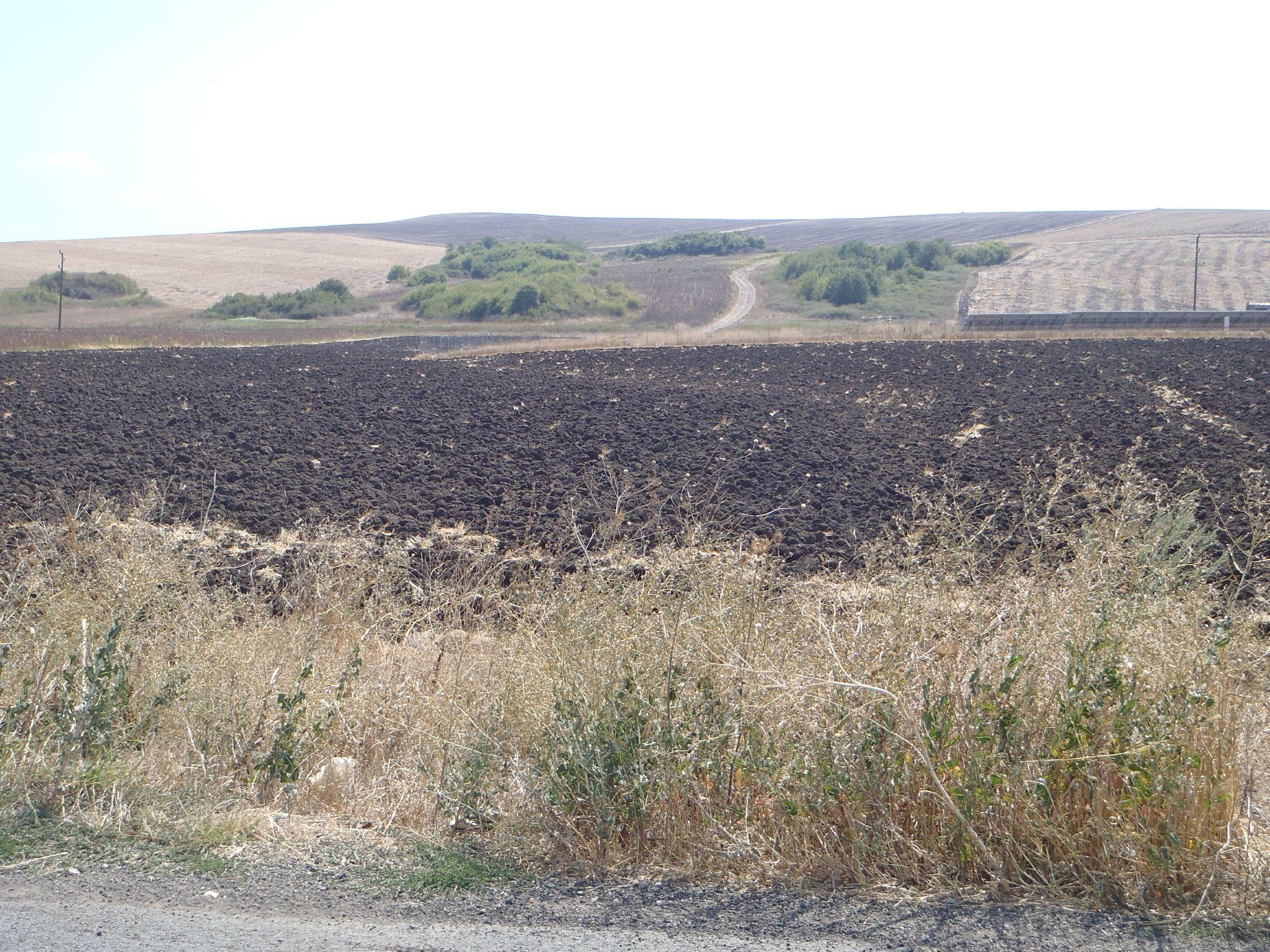bulgarie - terres agricoles