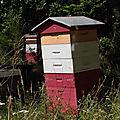 Voila l'été, voilà l'été ! ! simplement, de très grands miels en perspective seront à déguster à l'automne.