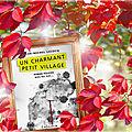 Un charmant petit village (jean-michel lecocq)