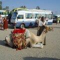 mon voyage Egypte