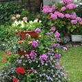 jardins fleuris 0730074