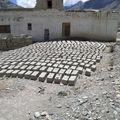 Ladakh 2 Aout 08 Olympus 431