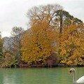 Automne sur le Lac d'Annecy