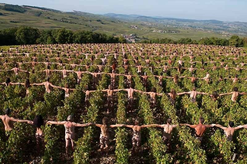 Spencer Tunick - Bourgogne - octobre 2009