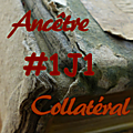 #1j1ancetre - #1j1collateral - 18 juillet