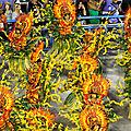 carnaval RIO29