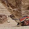 Jordanie - la cité antique de petra - la rue des façades