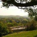 Irlande/leinster - excursion aux powerscourt gardens