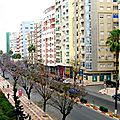 ???? ????? ?????? ?????...Avenue des F.A.R Meknes