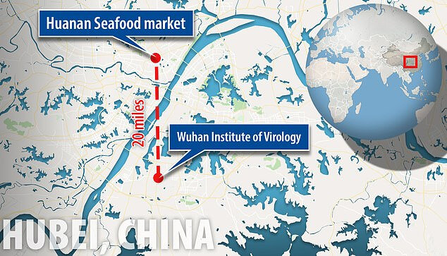 The-Wuhan-National-Biosafety-Laboratory-is-located-about-20-miles-away-from-the-Huanan-Seafood-Market-