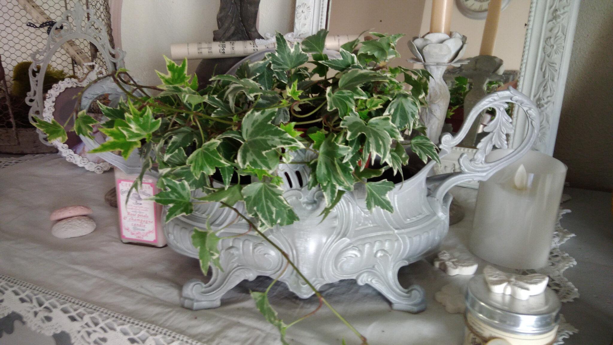 Ancienne jardinière patinée de gris et de blanc