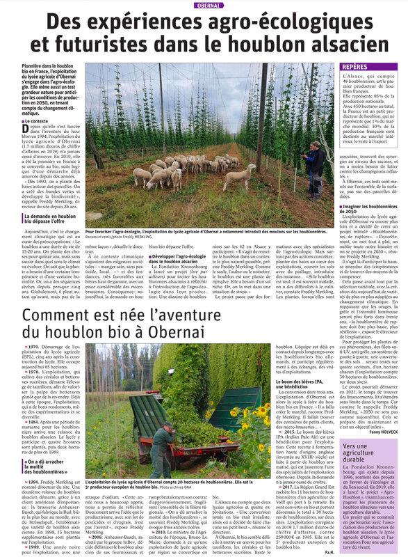 article DNA du 4 01 21 sur le houblon alsacien
