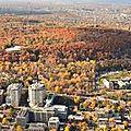 la colline du Mont Ryal à Montreal