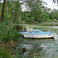 Nuances de vert(s) au bord du lac
