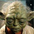 209-Yoda