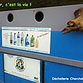 Cherchebruit, recyclage en cours (64)