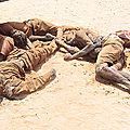 La tragédie des migrants : les algériens indifférents.