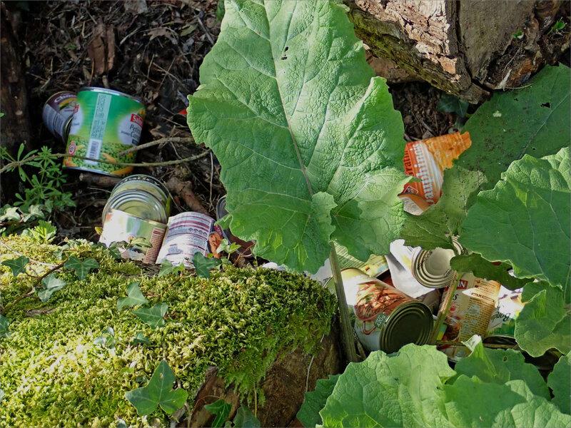 déchets boites conserve 180418