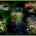 Jardins de ville et de campagne...