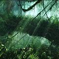 Des principes de bases des esprits de la nature