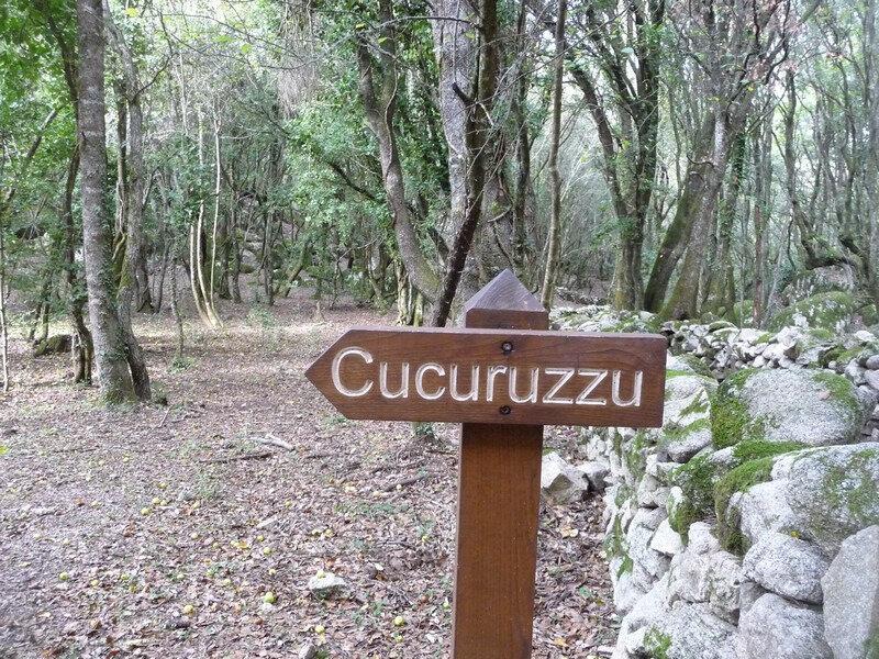 274 - Un petit tour en Corse du Sud 10