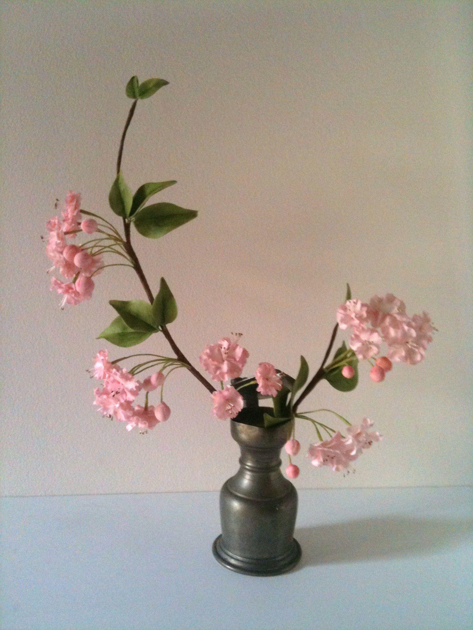 cerisier japonais (3)
