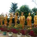 10000 buddhas 044